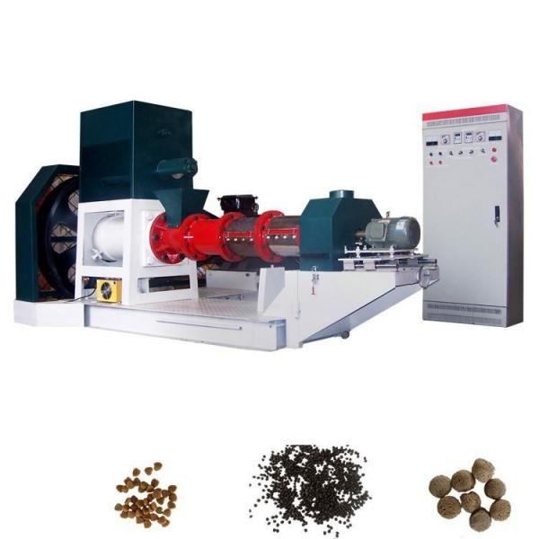 Complete Sinking Fish Feed Production Line for Aqua Feed Pellet Mill Machine Supplier
